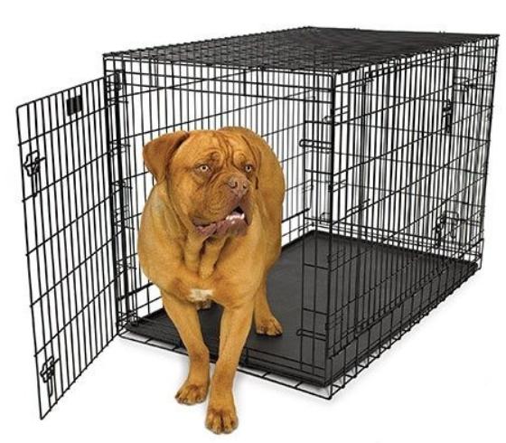 billigt hundebur stål