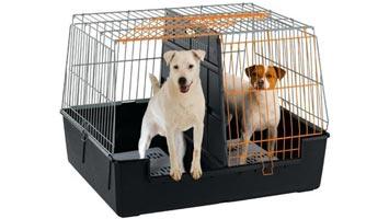 Transportbur til to små hunde. Buret er perfekt til to små eller mellemstore hunde. Hunde bur XL - 2 hunde 100 x 80 centimeter.