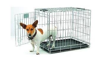 bur til de små hunderacer, fås i mange flere størrelser