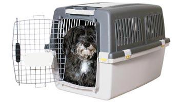 Transportkasser til hunde