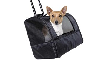 Praktisk transporttaske til små hunde. Taske til små racer.