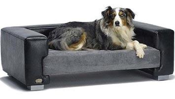 Hundesofa i god stil og flot design i træ og Windsor